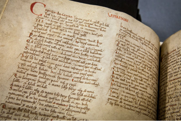 Pages in the Domesday manuscript